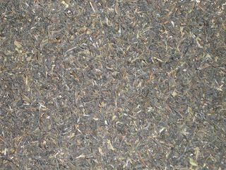 Indian Green Darjeeling